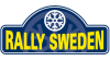 rally de suecia dirt rally